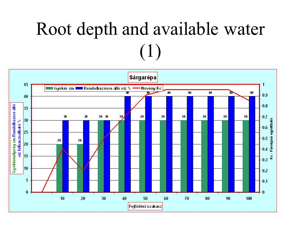 Root depth and available water (1)