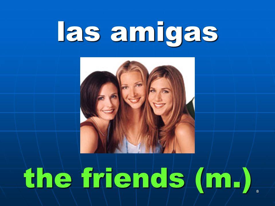 7 los amigos the friends (m.)