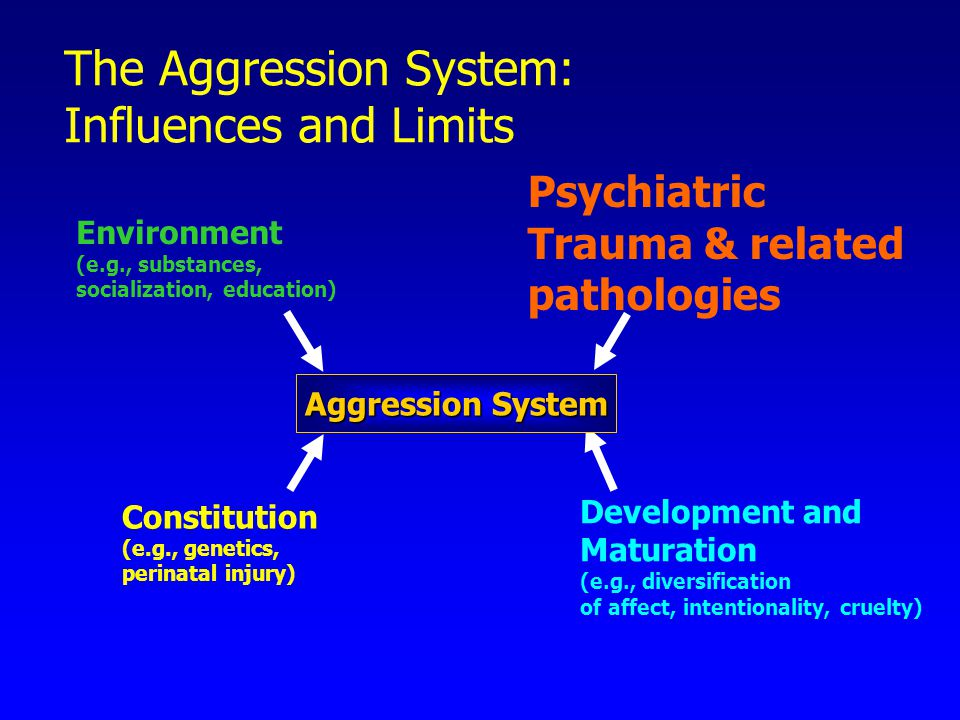 The Aggression System: Influences and Limits Environment (e.g., substances, socialization, education) Constitution (e.g., genetics, perinatal injury) Psychiatric Trauma & related pathologies Development and Maturation (e.g., diversification of affect, intentionality, cruelty) Aggression System