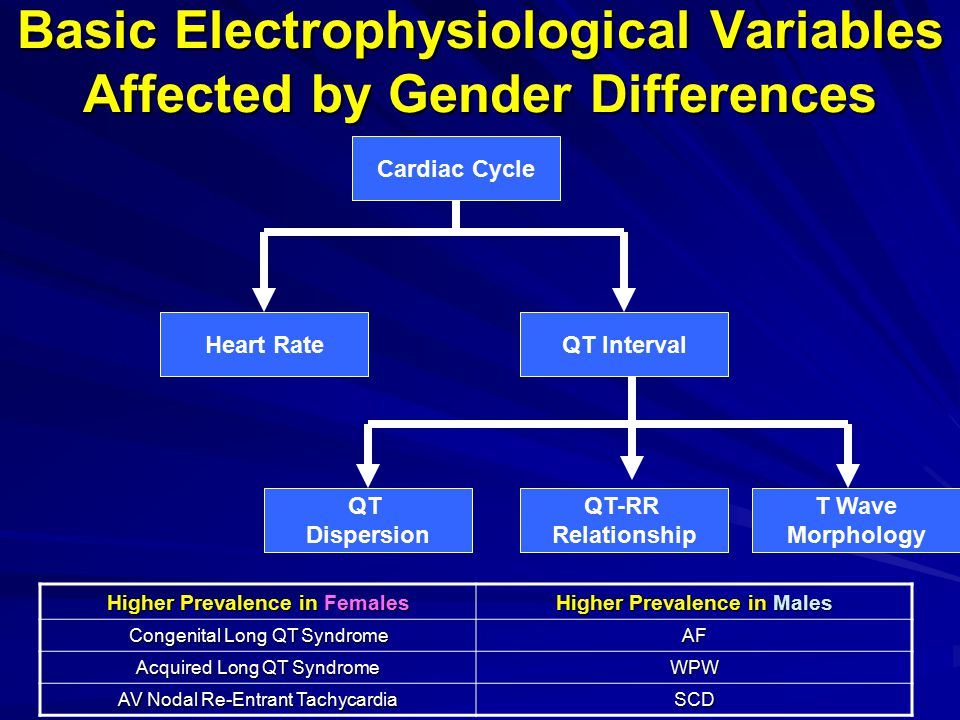 Sex-Related Differences in Repolarization Action Potentials from Isolated Guinea Pig Ventricular Myocytes Baseline and Ibutilide-Induced QTc Change in Normal Volunteers Rodriguez I et al.