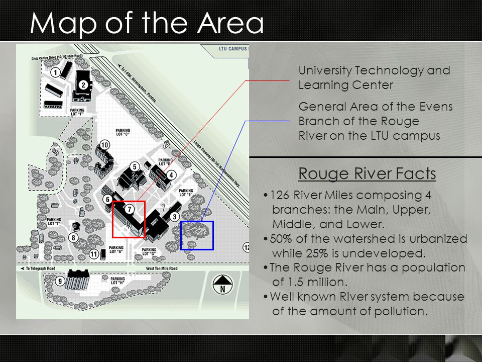 Map of the Area University Technology and Learning Center General Area of the Evens Branch of the Rouge River on the LTU campus 126 River Miles composing 4 branches: the Main, Upper, Middle, and Lower.