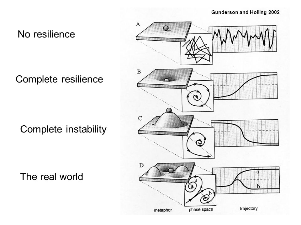 Gunderson and Holling 2002 No resilience Complete resilience Complete instability The real world