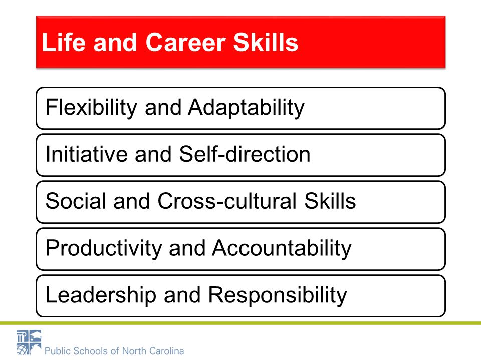 Life and Career Skills Flexibility and AdaptabilityInitiative and Self-directionSocial and Cross-cultural SkillsProductivity and AccountabilityLeaders
