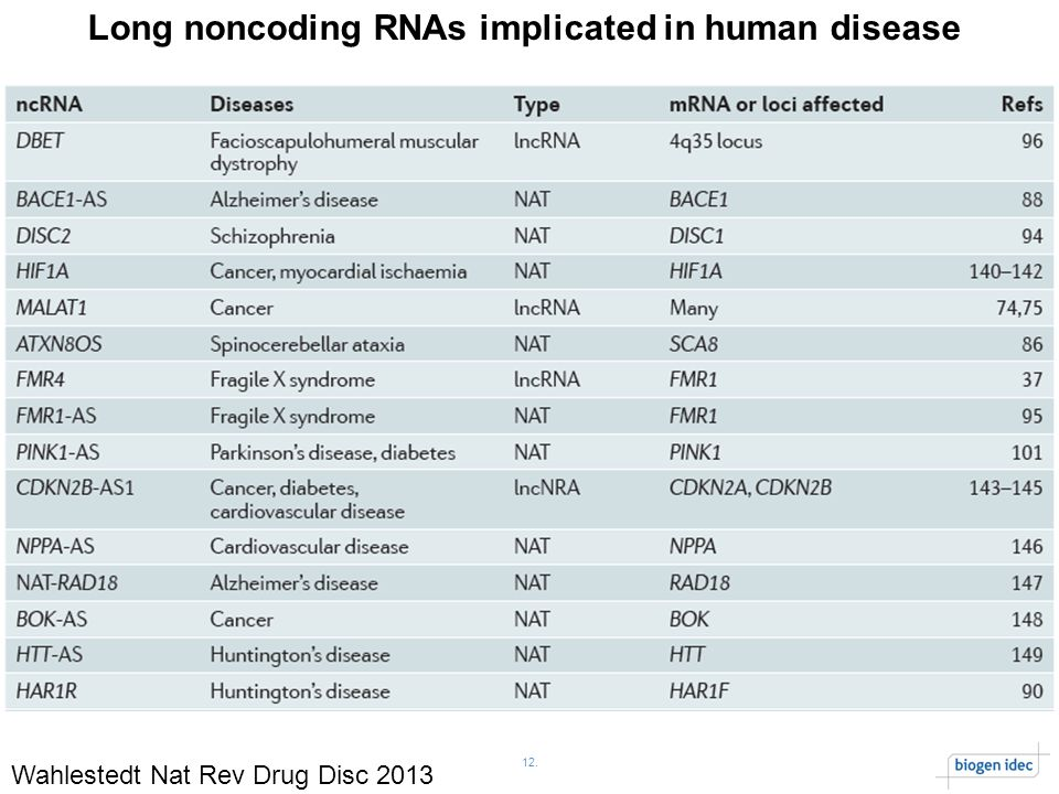 12. Long noncoding RNAs implicated in human disease Wahlestedt Nat Rev Drug Disc 2013