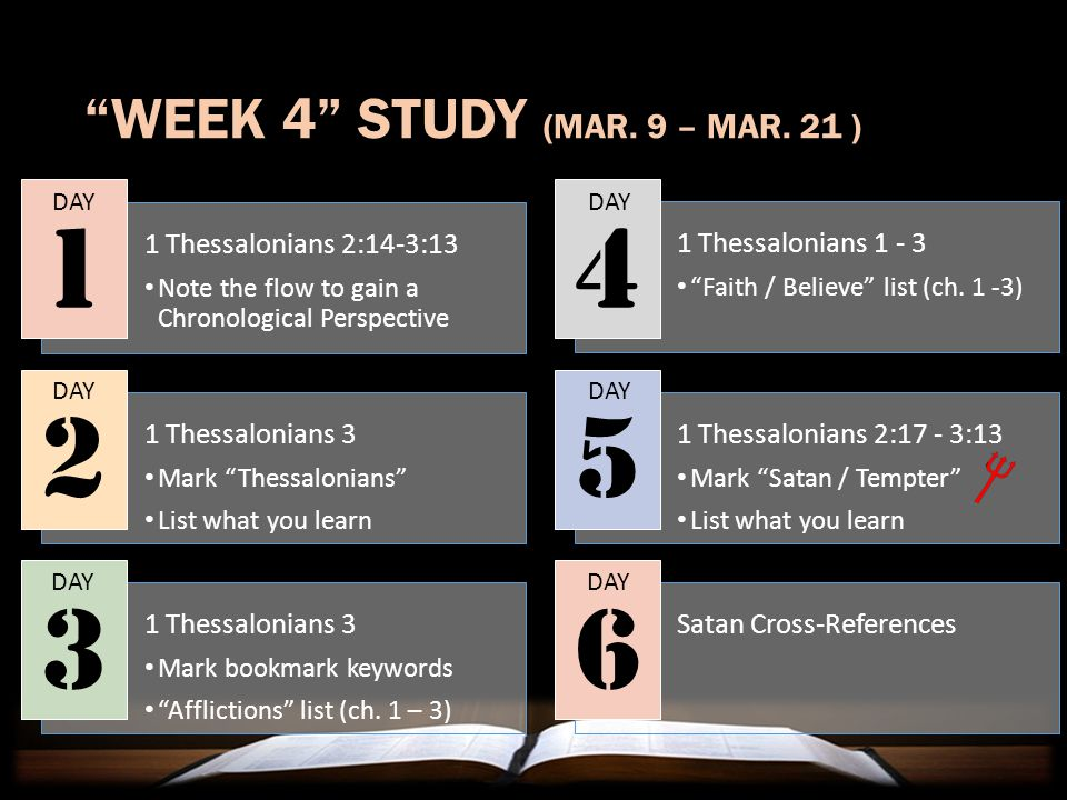 NEXT WEEK'S CLASS The Value of Character Studies WHO'S WHO IN SCRIPTURE