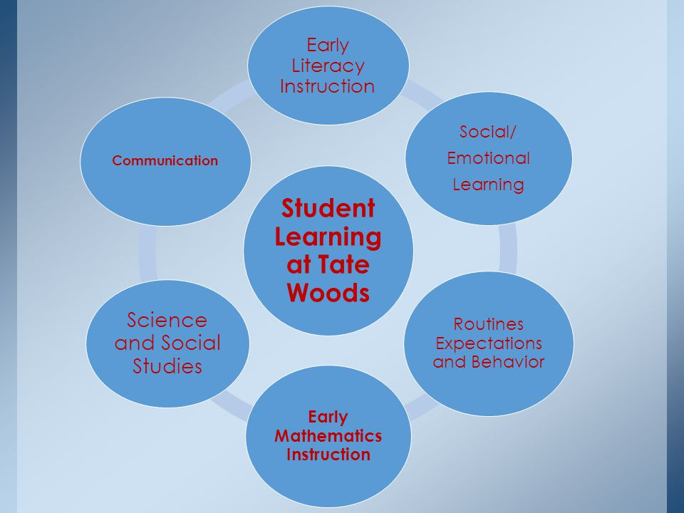 Student Learning at Tate Woods Early Literacy Instruction Social/ Emotional Learning Routines Expectations and Behavior Early Mathematics Instruction Science and Social Studies Communication