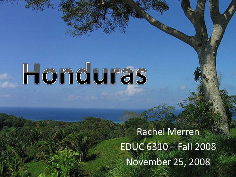 Rachel Merren EDUC 6310 – Fall 2008 November 25, 2008