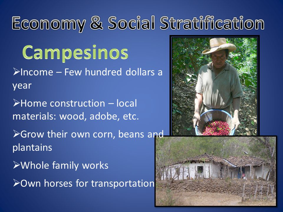  Income – Few hundred dollars a year  Home construction – local materials: wood, adobe, etc.  Grow their own corn, beans and plantains  Whole fami