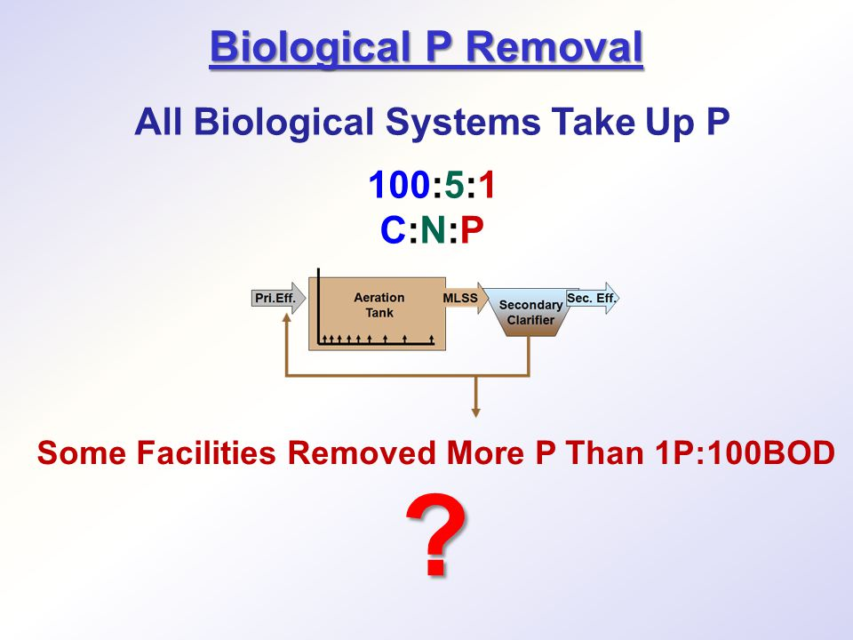 Biological P Removal All Biological Systems Take Up P 100:5:1 C:N:P Some Facilities Removed More P Than 1P:100BOD ?