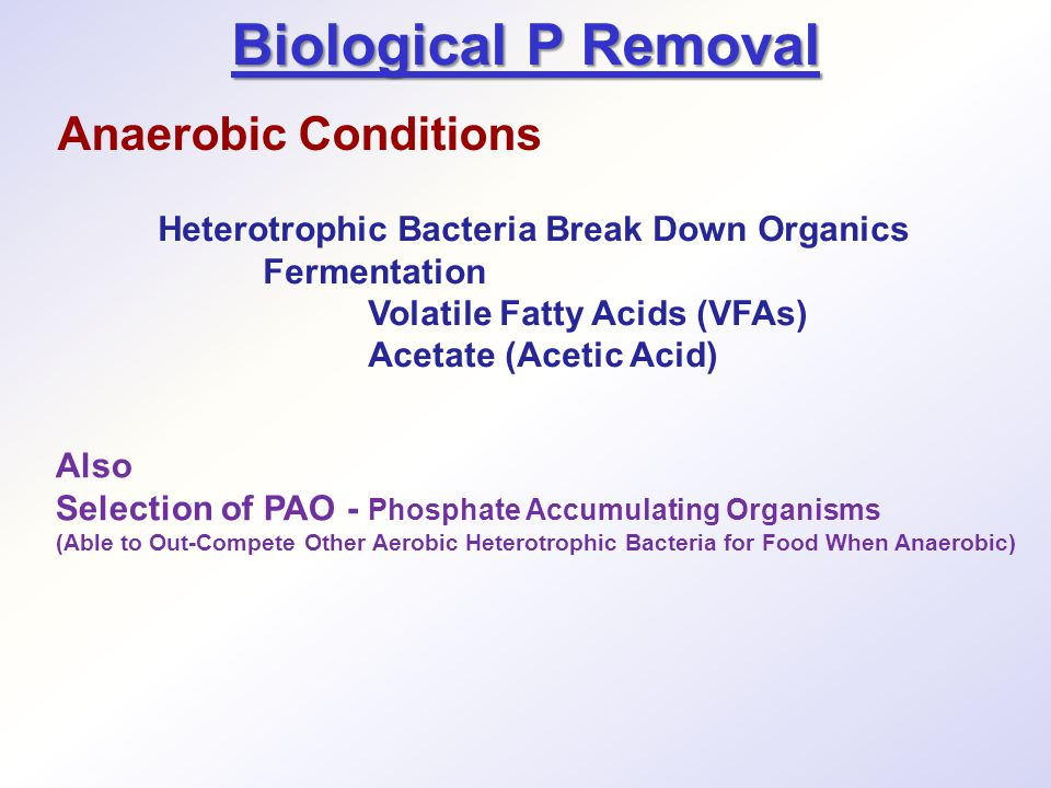 Biological P Removal Also Selection of PAO - Phosphate Accumulating Organisms (Able to Out-Compete Other Aerobic Heterotrophic Bacteria for Food When Anaerobic) Heterotrophic Bacteria Break Down Organics Fermentation Volatile Fatty Acids (VFAs) Acetate (Acetic Acid) Anaerobic Conditions