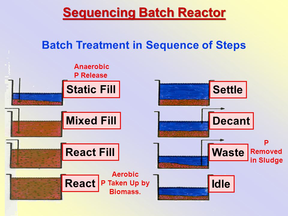 Sequencing Batch Reactor Batch Treatment in Sequence of Steps Anaerobic P Release Aerobic P Taken Up by Biomass.