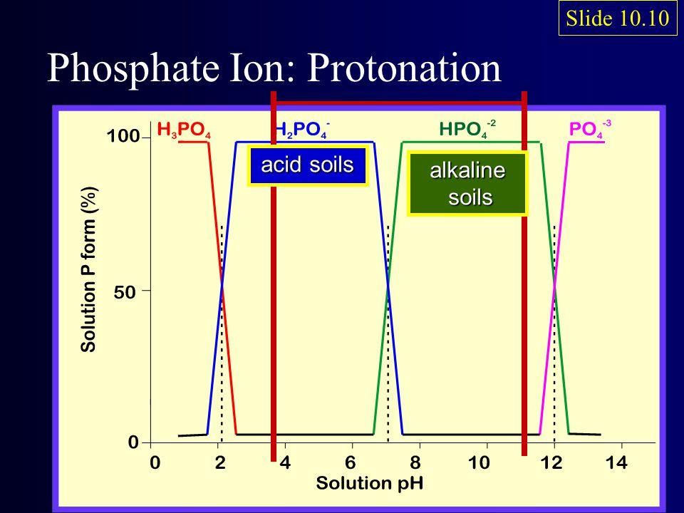 acid soils alkaline soils soils Phosphate Ion: Protonation Slide 10.10