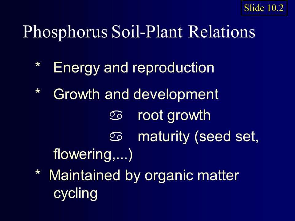 Phosphorus Soil-Plant Relations * Energy and reproduction * Growth and development a root growth a maturity (seed set, flowering,...) * Maintained by organic matter cycling Slide 10.2