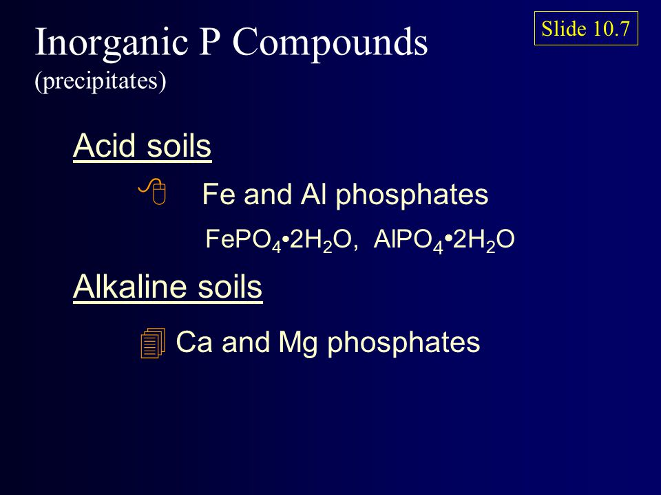 Inorganic P Compounds (precipitates) Acid soils 8 Fe and Al phosphates FePO 4 2H 2 O, AlPO 4 2H 2 O Alkaline soils 4 Ca and Mg phosphates Slide 10.7