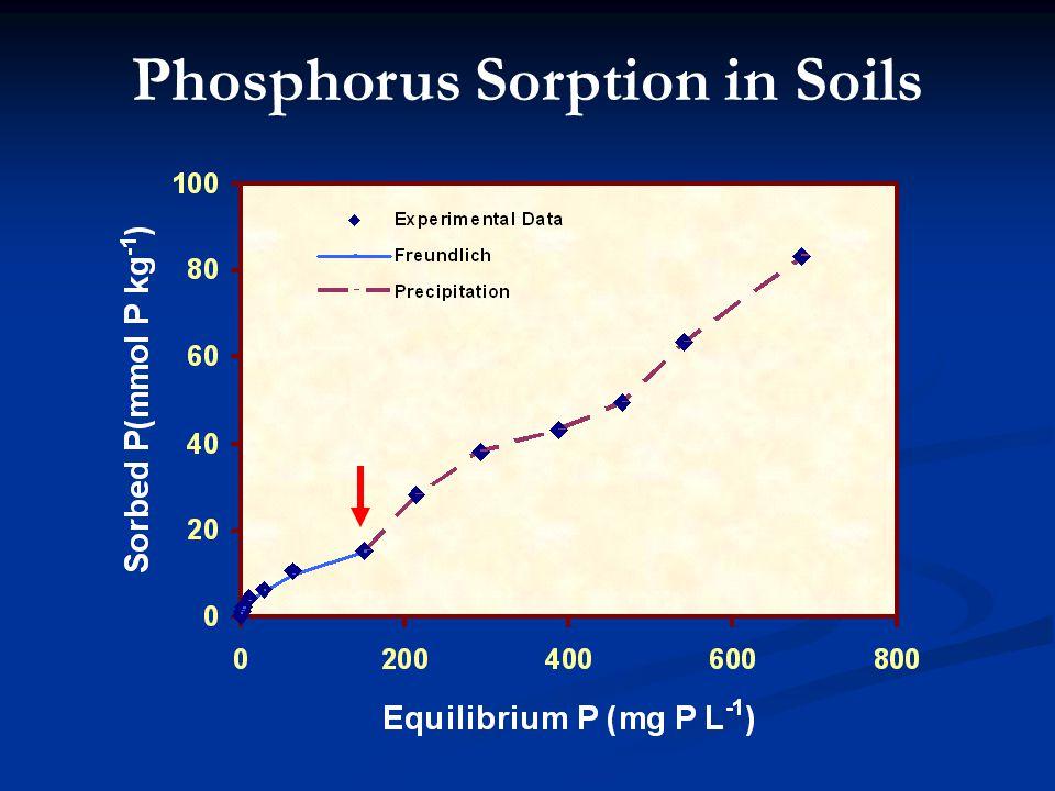 Phosphorus Sorption in Soils