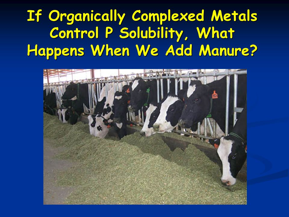 If Organically Complexed Metals Control P Solubility, What Happens When We Add Manure?