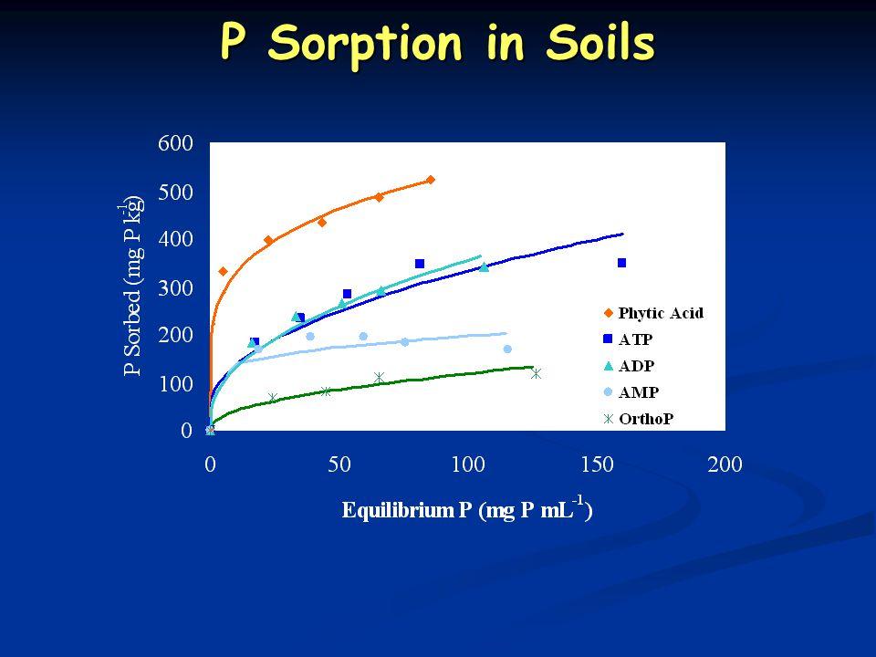 P Sorption in Soils