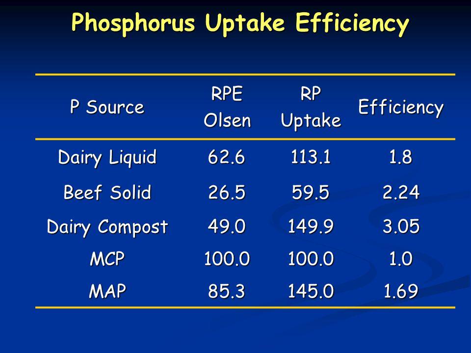 P Source RPEOlsenRPUptakeEfficiency Dairy Liquid 62.6113.11.8 Beef Solid 26.559.52.24 Dairy Compost 49.0149.93.05 MCP100.0100.01.0 MAP85.3145.01.69 Phosphorus Uptake Efficiency Phosphorus Uptake Efficiency