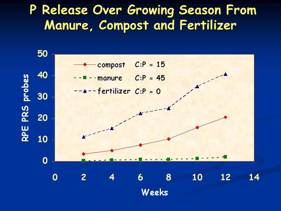 P Release Over Growing Season From Manure, Compost and Fertilizer P Release Over Growing Season From Manure, Compost and Fertilizer C:P = 15 C:P = 45