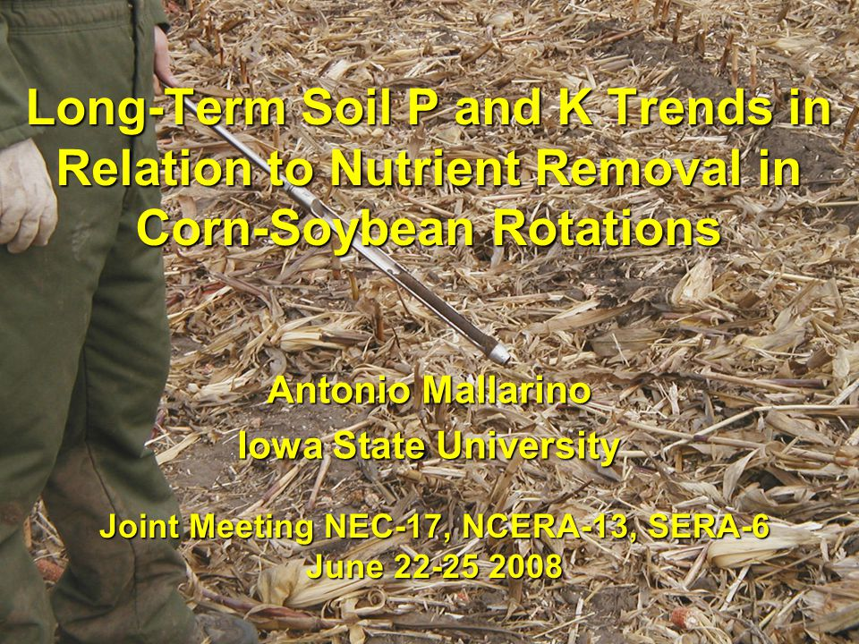 Long-Term Soil P and K Trends in Relation to Nutrient Removal in Corn-Soybean Rotations Antonio Mallarino Iowa State University Joint Meeting NEC-17, NCERA-13, SERA-6 June 22-25 2008