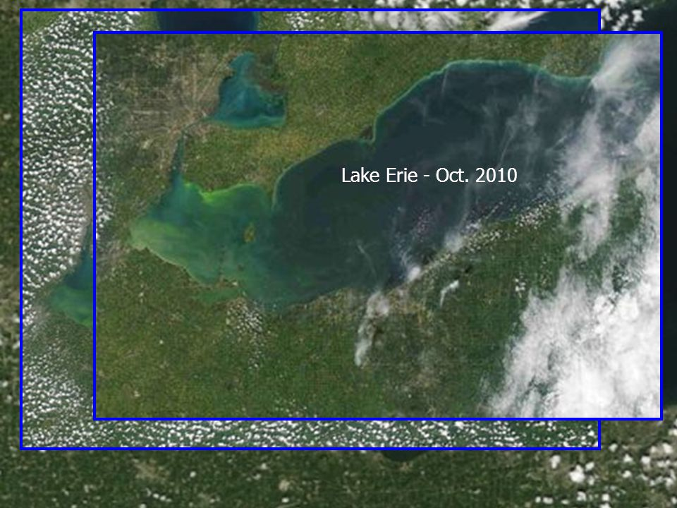 Lake Erie – Sept. 2008 Lake Erie – Sept. 2009 Lake Erie - Oct. 2010