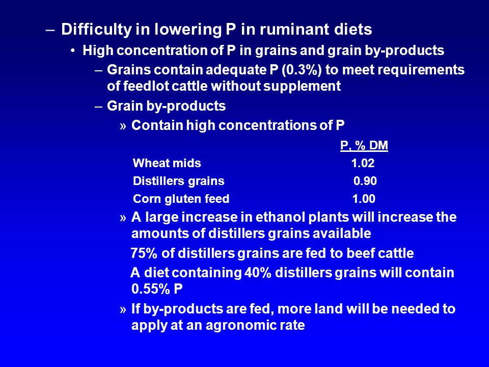 –Difficulty in lowering P in ruminant diets High concentration of P in grains and grain by-products –Grains contain adequate P (0.3%) to meet requirem