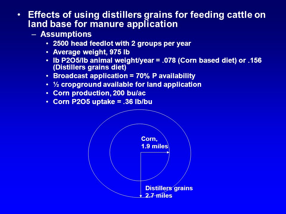 Effects of using distillers grains for feeding cattle on land base for manure application –Assumptions 2500 head feedlot with 2 groups per year Averag