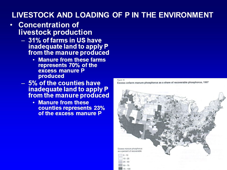 LIVESTOCK AND LOADING OF P IN THE ENVIRONMENT Concentration of livestock production –31% of farms in US have inadequate land to apply P from the manur