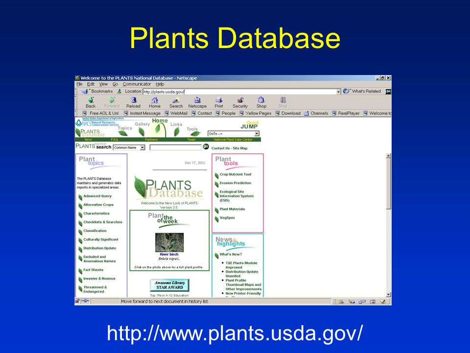 Plants Database http://www.plants.usda.gov/