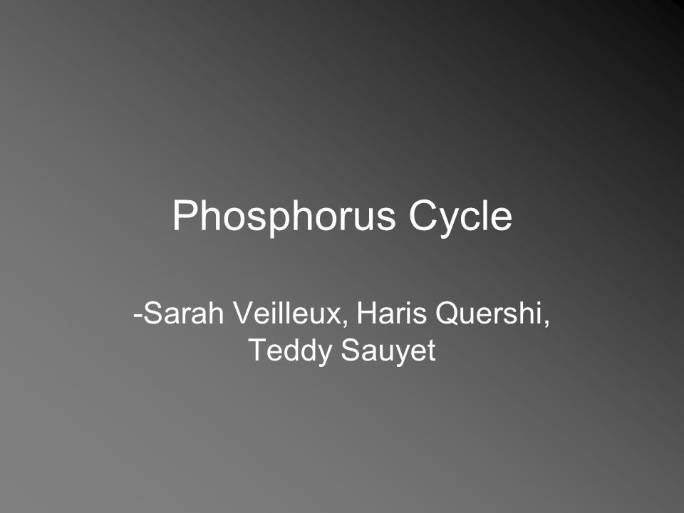 Phosphorus Cycle -Sarah Veilleux, Haris Quershi, Teddy Sauyet