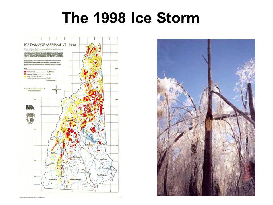 The 1998 Ice Storm