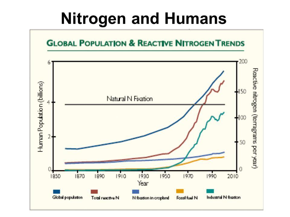 Nitrogen and Humans