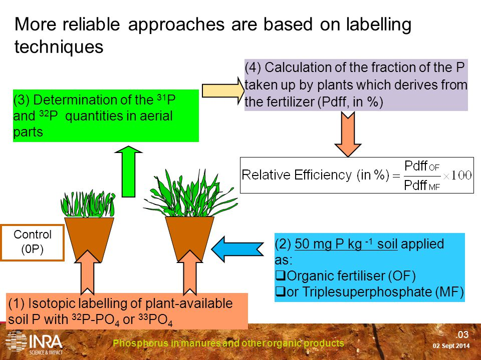 .03 Phosphorus in manures and other organic products 02 Sept 2014 More reliable approaches are based on labelling techniques (1) Isotopic labelling of plant-available soil P with 32 P-PO 4 or 33 PO 4 (2) 50 mg P kg -1 soil applied as:  Organic fertiliser (OF)  or Triplesuperphosphate (MF) (3) Determination of the 31 P and 32 P quantities in aerial parts (4) Calculation of the fraction of the P taken up by plants which derives from the fertilizer (Pdff, in %) Control (0P)