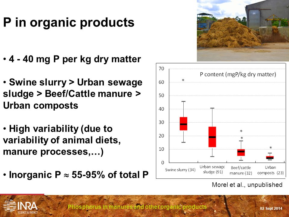 P in organic products 4 - 40 mg P per kg dry matter Swine slurry > Urban sewage sludge > Beef/Cattle manure > Urban composts High variability (due to variability of animal diets, manure processes,…) Inorganic P  55-95% of total P Phosphorus in manures and other organic products 02 Sept 2014 Morel et al., unpublished