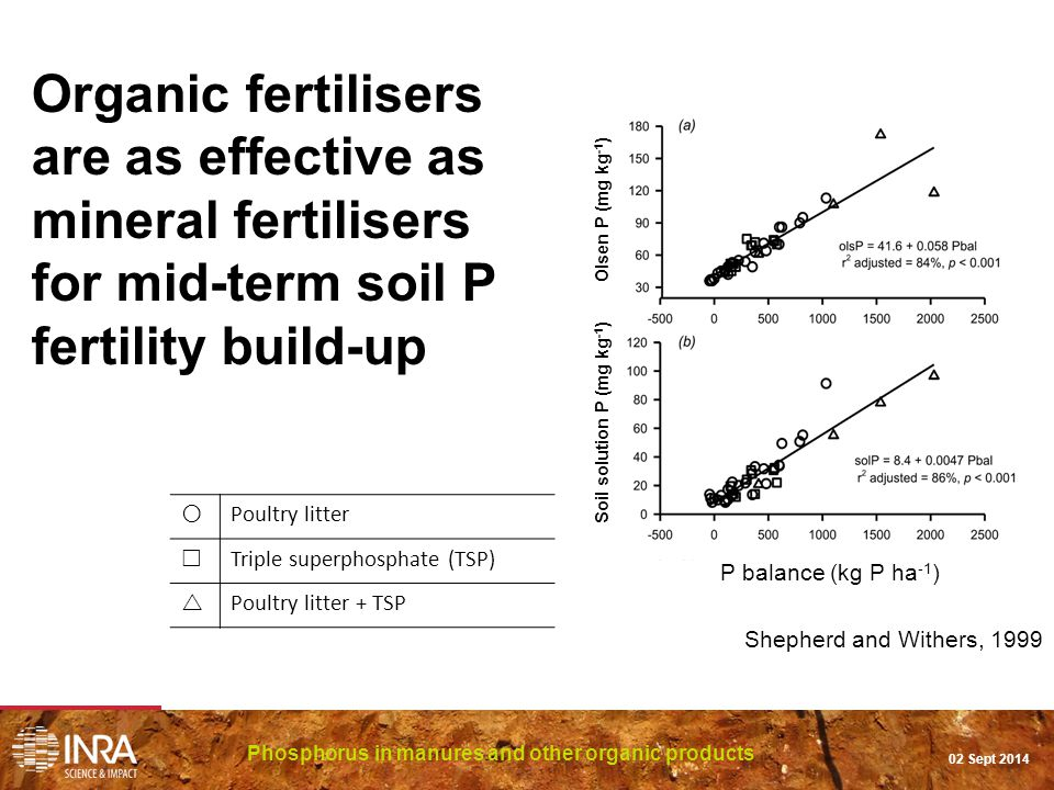 Organic fertilisers are as effective as mineral fertilisers for mid-term soil P fertility build-up Phosphorus in manures and other organic products 02 Sept 2014 Shepherd and Withers, 1999 Olsen P (mg kg -1 ) Soil solution P (mg kg -1 )  Poultry litter  Triple superphosphate (TSP)  Poultry litter + TSP P balance (kg P ha -1 )