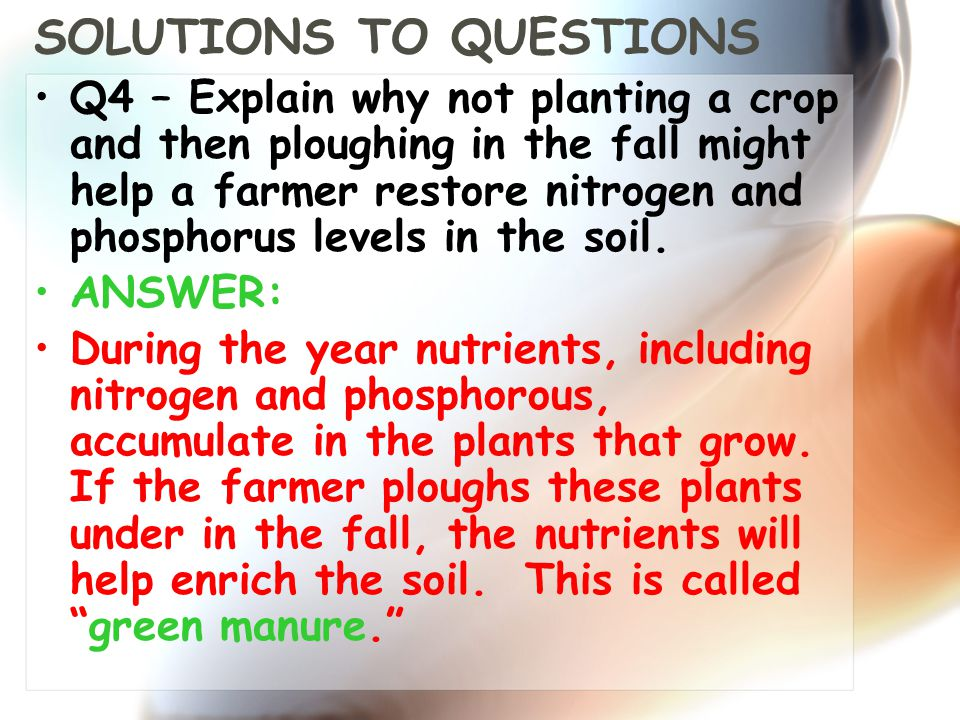 SOLUTIONS TO QUESTIONS Q4 – Explain why not planting a crop and then ploughing in the fall might help a farmer restore nitrogen and phosphorus levels in the soil.