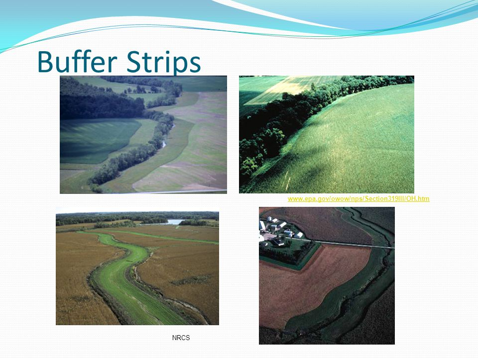 Buffer Strips www.epa.gov/owow/nps/Section319III/OH.htm NRCS