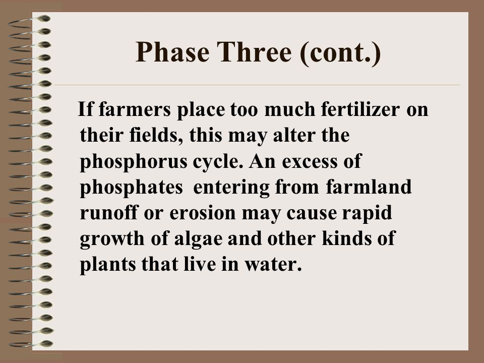 Phase Three (cont.) If farmers place too much fertilizer on their fields, this may alter the phosphorus cycle. An excess of phosphates entering from f