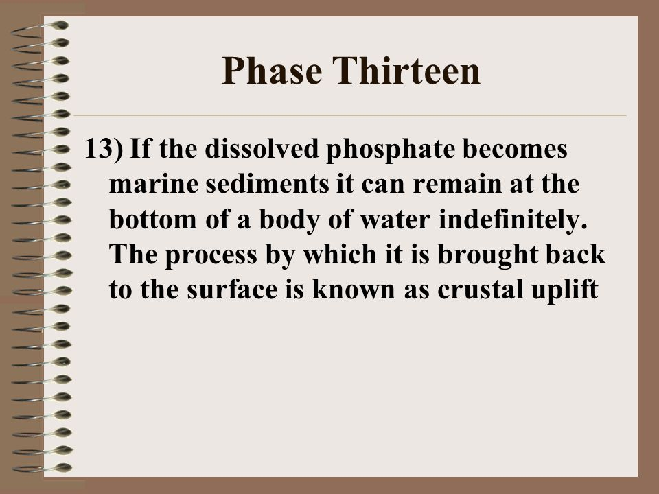 Phase Thirteen 13) If the dissolved phosphate becomes marine sediments it can remain at the bottom of a body of water indefinitely. The process by whi