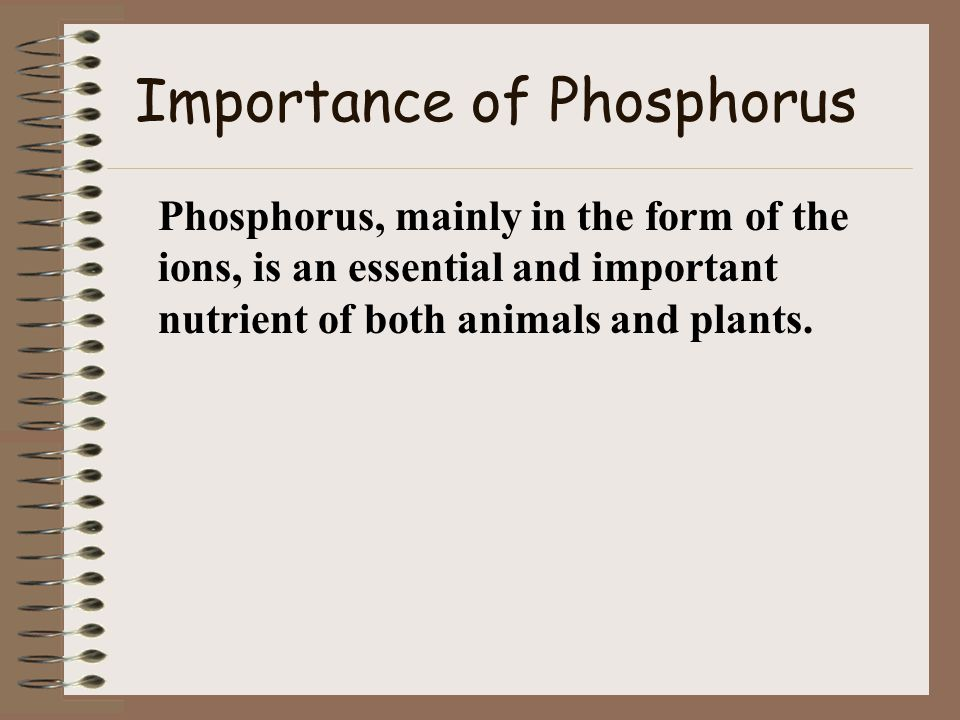 What is the Phosphorus Cycle.The phosphorus cycle occurs in many different ways.