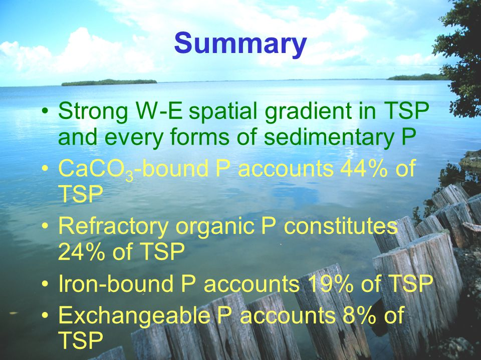 Summary Strong W-E spatial gradient in TSP and every forms of sedimentary P CaCO 3 -bound P accounts 44% of TSP Refractory organic P constitutes 24% of TSP Iron-bound P accounts 19% of TSP Exchangeable P accounts 8% of TSP