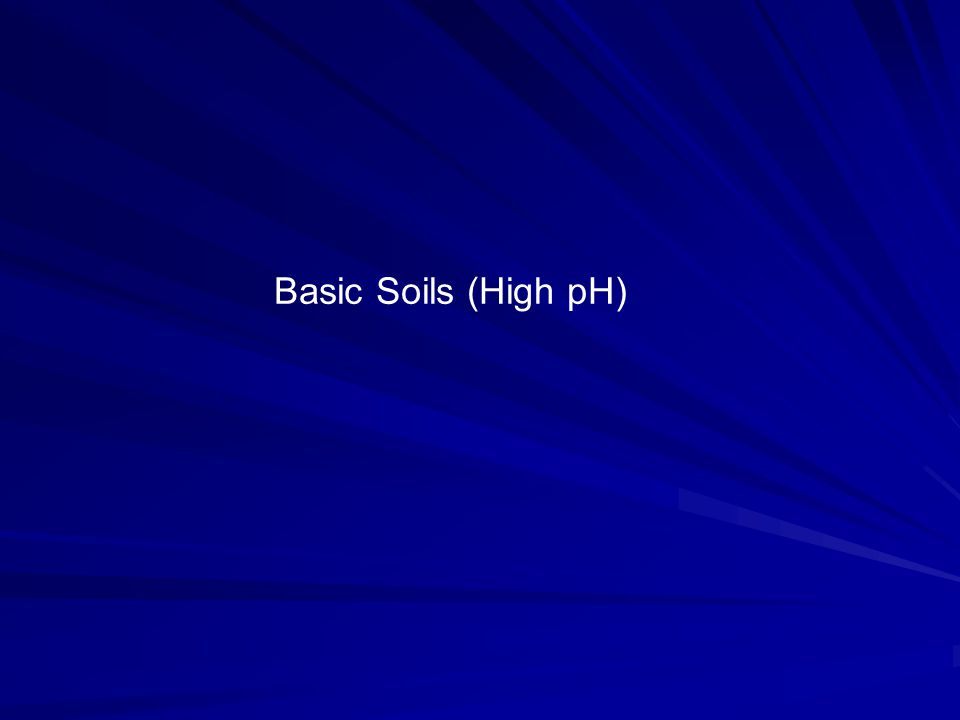 Basic Soils (High pH)