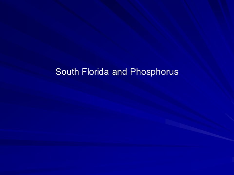 South Florida and Phosphorus