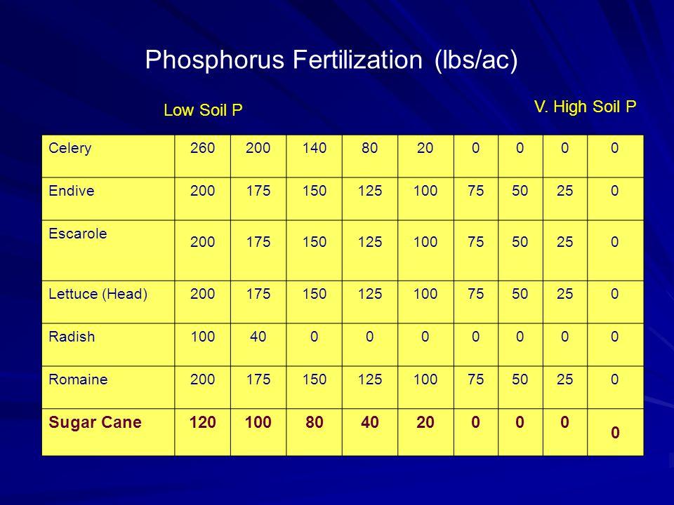 Celery26020014080200000 Endive2001751501251007550250 Escarole 2001751501251007550250 Lettuce (Head)2001751501251007550250 Radish100400000000 Romaine2001751501251007550250 Sugar Cane120100804020000 0 Phosphorus Fertilization (lbs/ac) Low Soil P V.