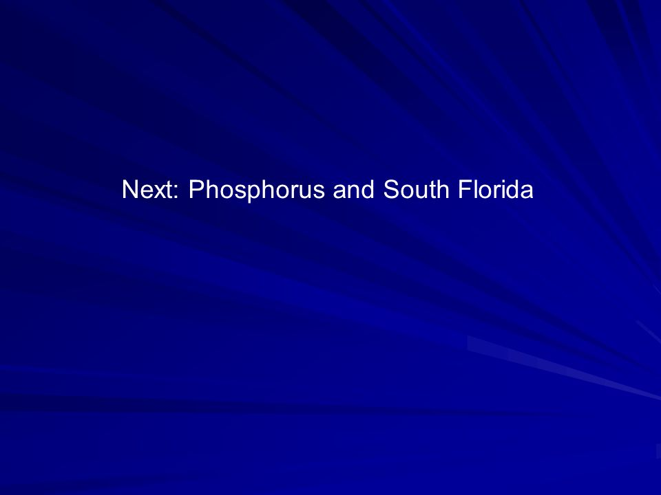 Next: Phosphorus and South Florida