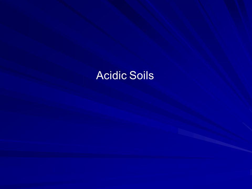 Acidic Soils