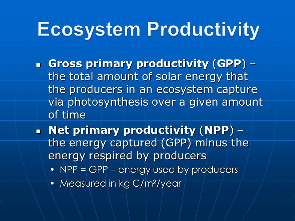 Gross primary productivity (GPP) – the total amount of solar energy that the producers in an ecosystem capture via photosynthesis over a given amount of time Gross primary productivity (GPP) – the total amount of solar energy that the producers in an ecosystem capture via photosynthesis over a given amount of time Net primary productivity (NPP) – the energy captured (GPP) minus the energy respired by producers Net primary productivity (NPP) – the energy captured (GPP) minus the energy respired by producers NPP = GPP – energy used by producersNPP = GPP – energy used by producers Measured in kg C/m 2 /yearMeasured in kg C/m 2 /year