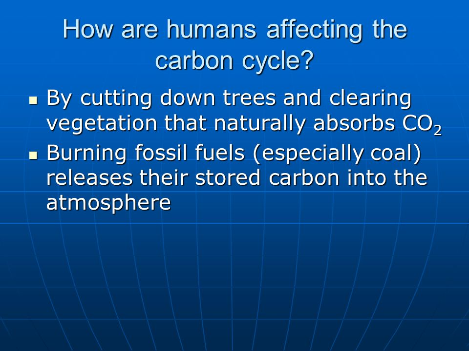 By cutting down trees and clearing vegetation that naturally absorbs CO 2 By cutting down trees and clearing vegetation that naturally absorbs CO 2 Bu