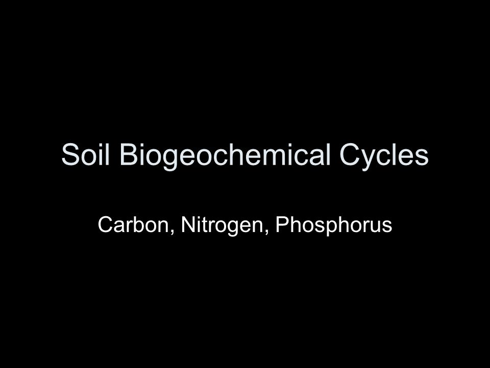 Soil Biogeochemical Cycles Carbon, Nitrogen, Phosphorus