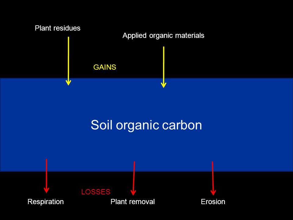 Soil organic carbon Plant residues Applied organic materials GAINS RespirationPlant removalErosion LOSSES